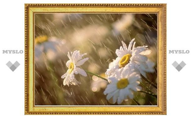 Тулу ждет потепление и дожди