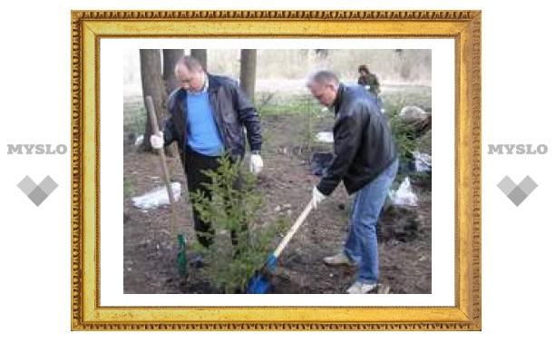 В Ясной Поляне тульские депутаты высаживают деревья