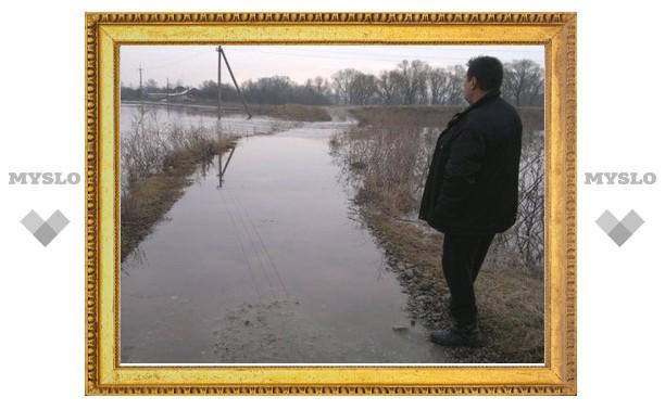 В Туле критическая паводковая ситуация, невиданная много лет