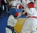 Определилась сборная региона по спортивному каратэ