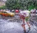 Погода в Туле 29 июля: дождь с грозой и до 30 градусов тепла