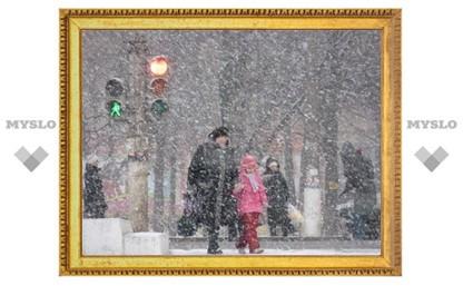 Тулу сегодня снова ждет снег