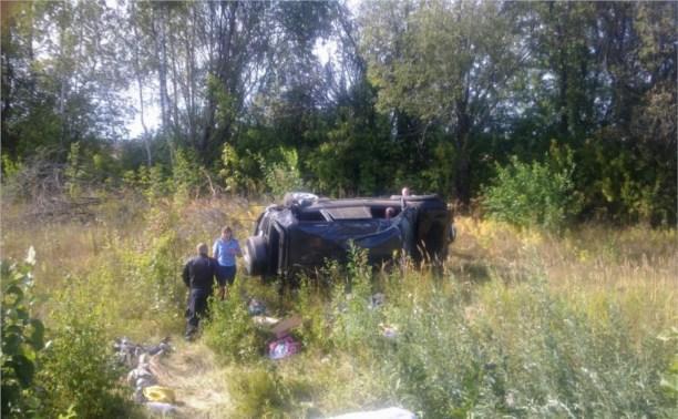В ДТП неподалёку от деревни Карамышево заживо сгорели два человека