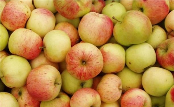 После Нового года яблоки в России будут стоить не меньше 60 рублей за кило
