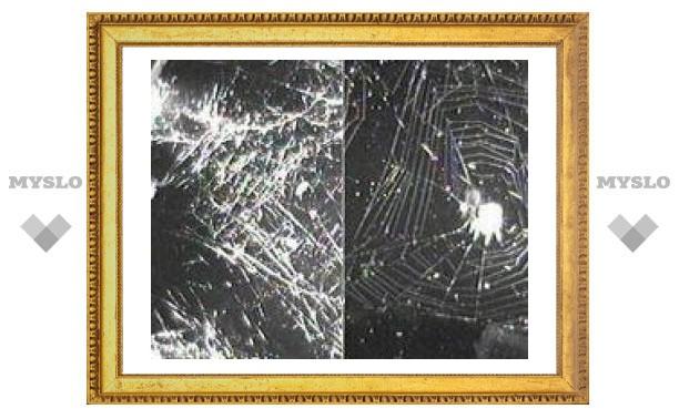 """На МКС нашли """"потерявшегося"""" паука"""