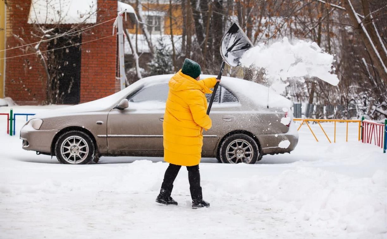 Погода 31 января: в Туле возможен снегопад и около 0℃