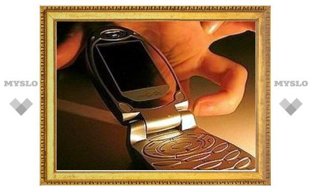 У жителя Тулы на улице Кирова украли телефон