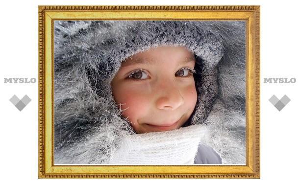 Морозы в Туле продержатся до конца месяца