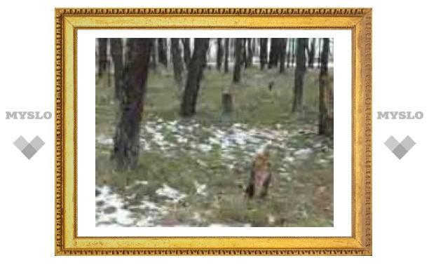 В Тульской области поймали фермера-браконьера