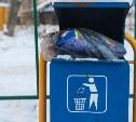 Региональных мусорных операторов освободят от уплаты НДС