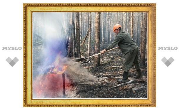 Добровольную пожарную охрану в Кимовском районе создадут принудительно