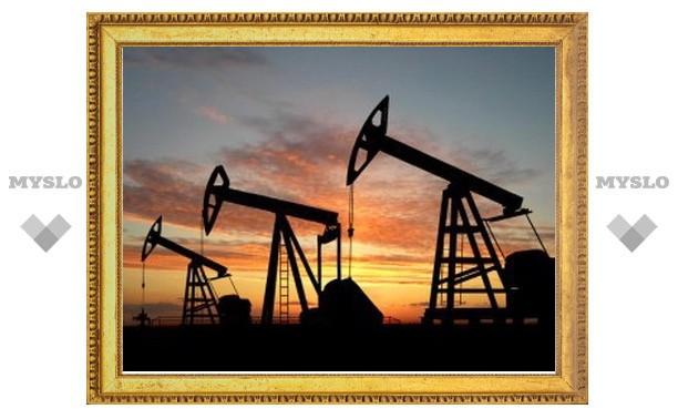 Ценам на нефть предсказали падение на 18 долларов