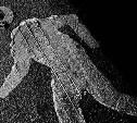 В Туле водитель насмерть сбил мужчину и скрылся