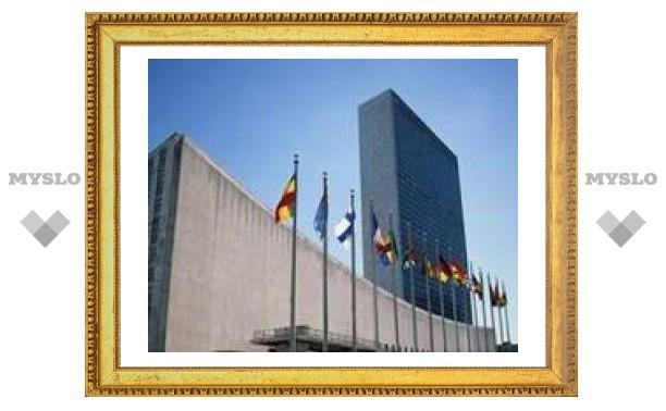 Совет по правам человека ООН заявил о недопустимости публичного оскорбления чувств верующих