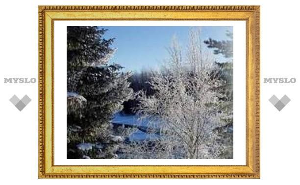 1 февраля: На весь февраль погода