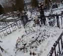 Житель Алексина умер на могиле своей матери