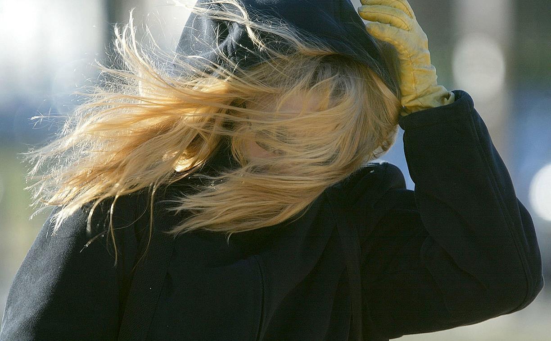 В Тульской области усилится ветер