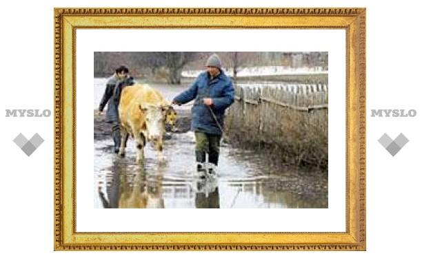 Будет ли паводок в Тульской области?