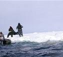 Двух туляков унесло на льдине