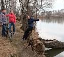 Кто прикарманил берег пруда в Воскресенском?