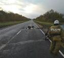 В аварии на трассе «Лапотково-Ефремов» погиб мужчина