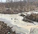 В тульском Заречье в Упу сливают канализацию c примесями жира и пищевыми отходами