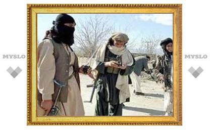 В боях на юге Пакистана убиты более 200 узбекских боевиков