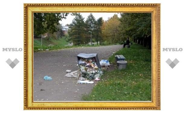 Кому в Туле пожаловаться на мусор и грязь