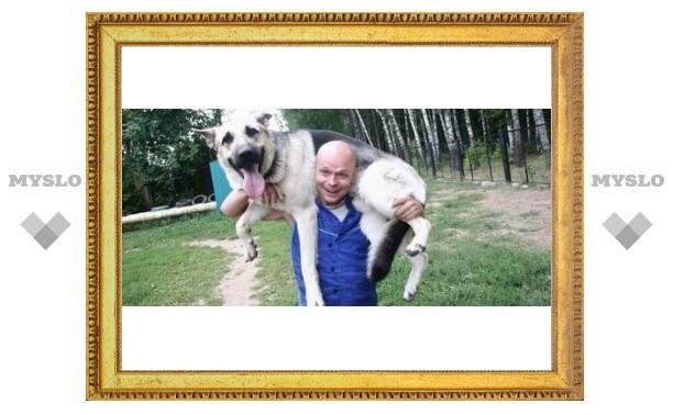 В Туле живет знаменитый пес Мухтар