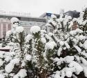 Погода в Туле 15 января: снег, гололед и ветер