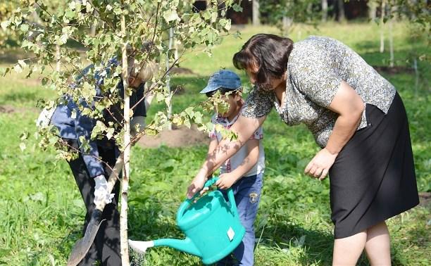 В Пролетарском районе высадили молодые деревья