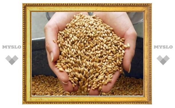 Жители Тульской области продолжают воровать зерно