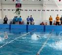 Тульские пловцы успешно выступают на Кубке России