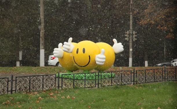 В Тульской области выпал первый снег