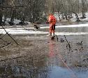 В Ефремовском районе сотрудники МЧС спасли дрейфующую на льдине собаку