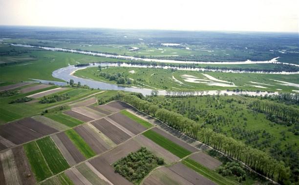 В 2015 году в Тульской области выявлено 878 нарушений земельного законодательства