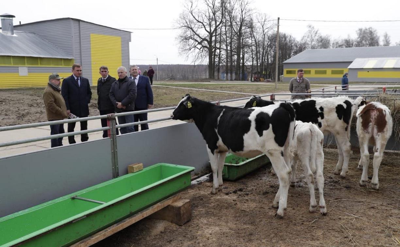 В Тульской области в 2,5 раза увеличили площадь земель, выдаваемых фермерам