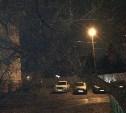 На улице Декабристов дерево упало на провода электропередачи