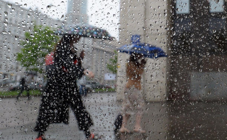 Погода в Туле 15 мая: небольшой дождь, до +15 и порывистый ветер