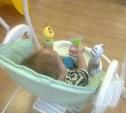 Новая мама Матвея пообещала сообщать о лечении малыша