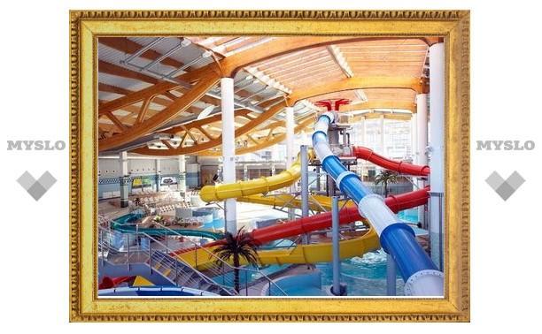 В Туле хотят построить аквапарк?