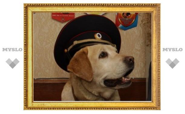 В Туле есть полицейская собака, которая умеет считать!
