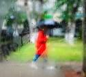 Погода в Туле 15 августа: дождь с грозой, облачно и ветрено
