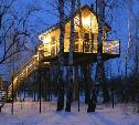 Туляк, построивший дом на дереве, поборется за звание «мастера гостеприимства»