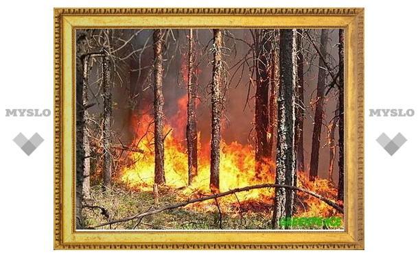 Для предотвращения лесных пожаров под Тулой опахивают поля