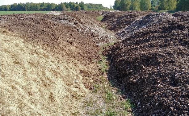 Вонь в Туле: мерзкий запах и нашествие мух в деревнях из-за гор куриного помета
