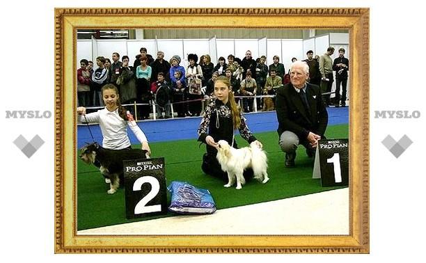 В Туле пройдет выставка собак САС