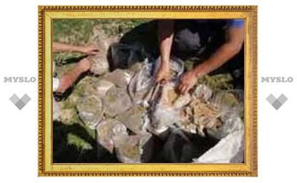 В Тульской области на борьбу с наркоманией выделено 16,5 млн. рублей