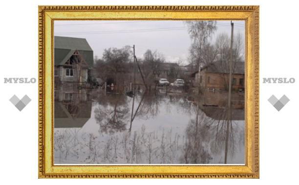 МЧС: эвакуация в Нижних Присадах пока не требуется
