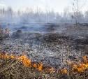 Жителей Тульской области предупредили о высокой пожароопасности